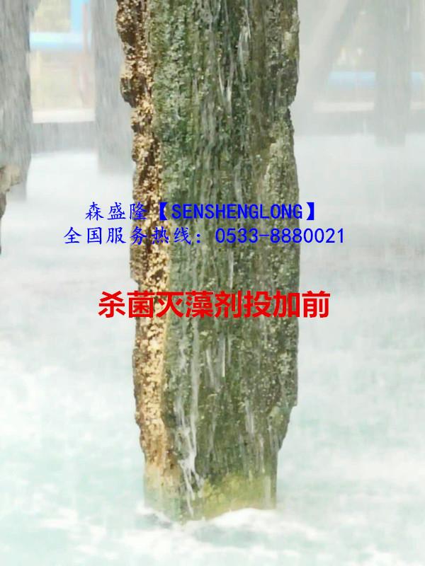 杀菌灭藻剂非氧化性S310厂家直销